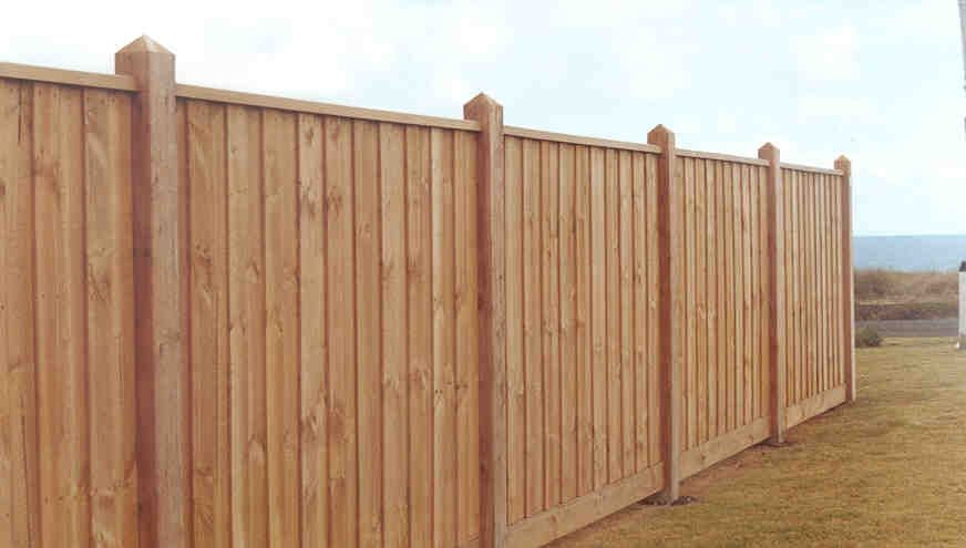 Paling Front Feature Fence With Exposed Posts Points And Capping Styles Of Fences Timber Fencing Wood Fence Design Fencing Gates