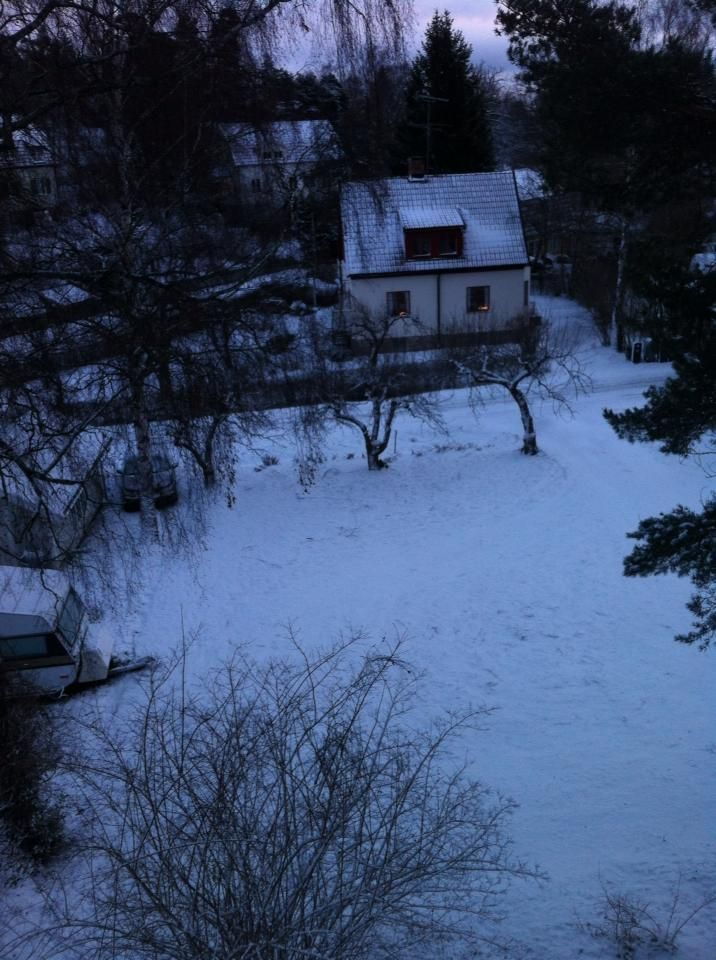 Snow in Dec- Sweden 2013