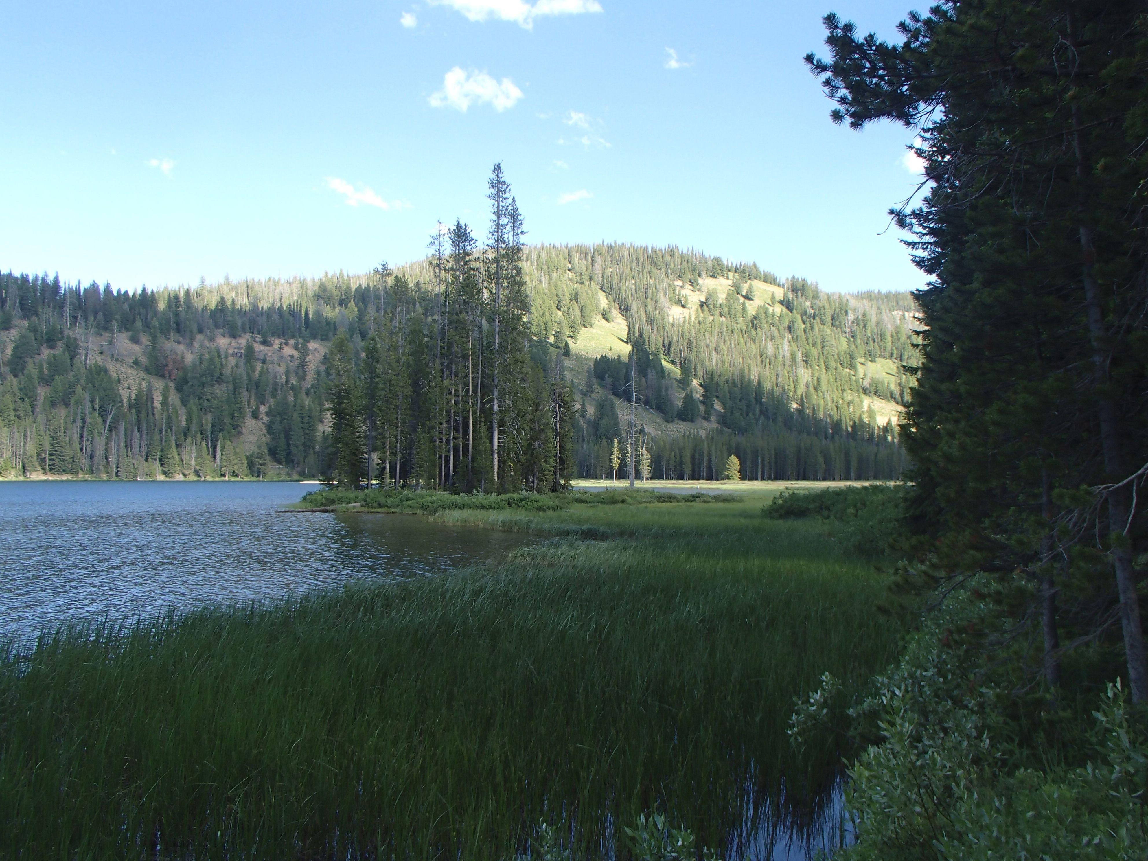 Bull Trout Lake Idaho Idaho Idaho Moving To Idaho Campsite