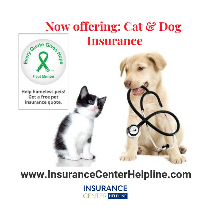 Pet Insurance Covers Everything That Matters For Your Dog Or Cat Including Injuries Illnesses Genet Pet Insurance Quotes Pet Insurance Pet Insurance Reviews