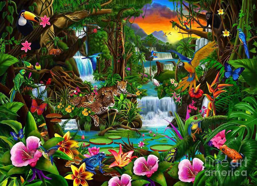 Beautiful Rainforest (With images) Jungle art