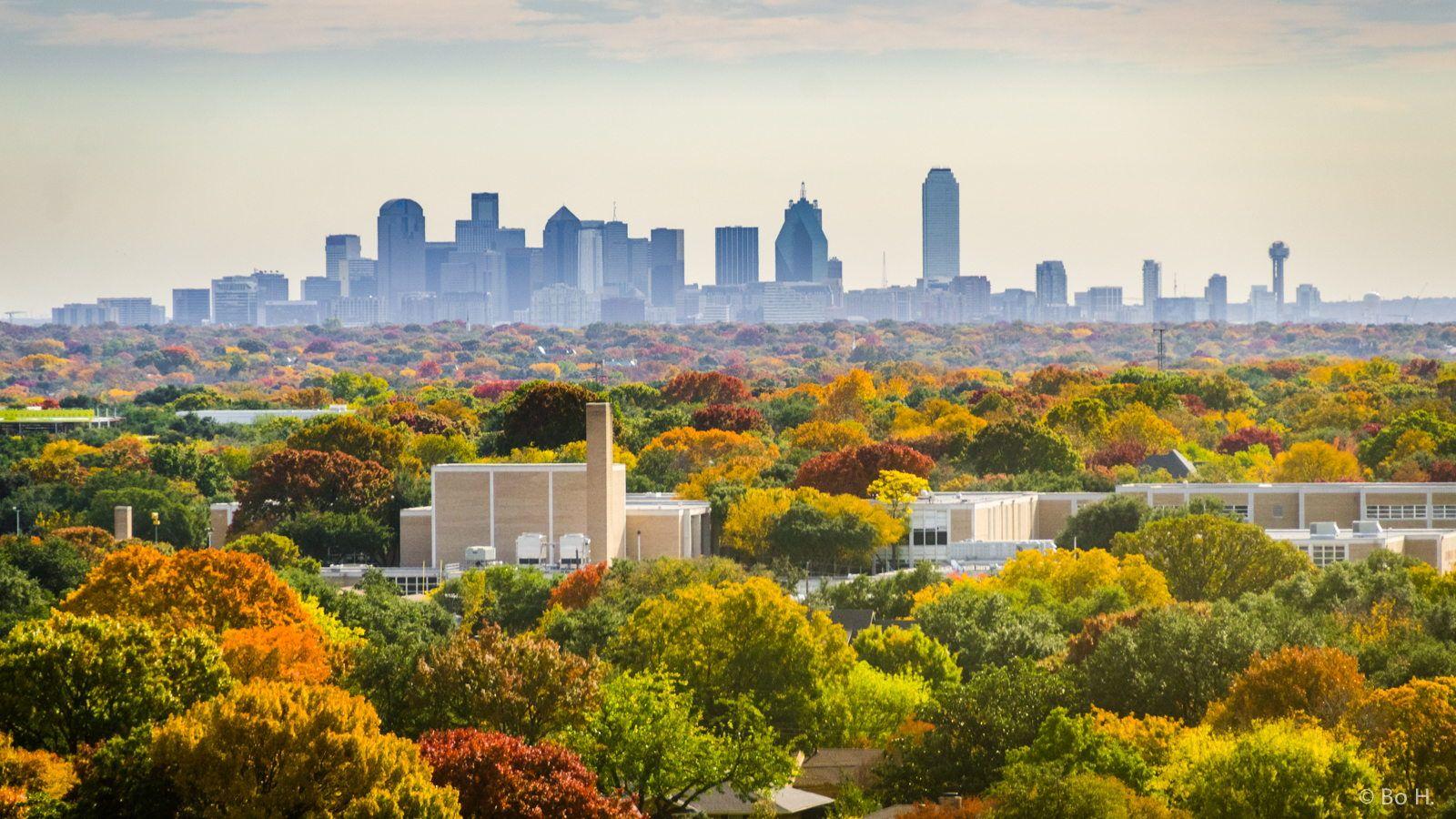 Dallas Skyline Colorfall Dallas skyline, Dallas, Skyline