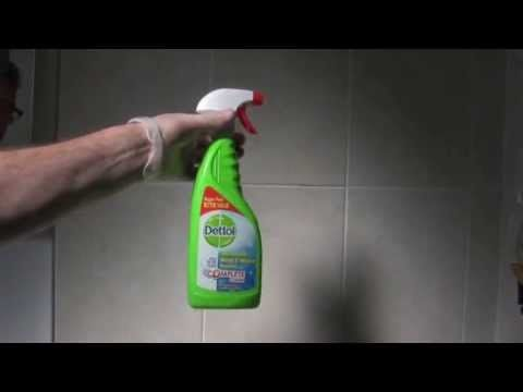 Dettol Mould Mildew Remover Mold And Mildew Remover Mold On Bathroom Ceiling Amazing Bathrooms
