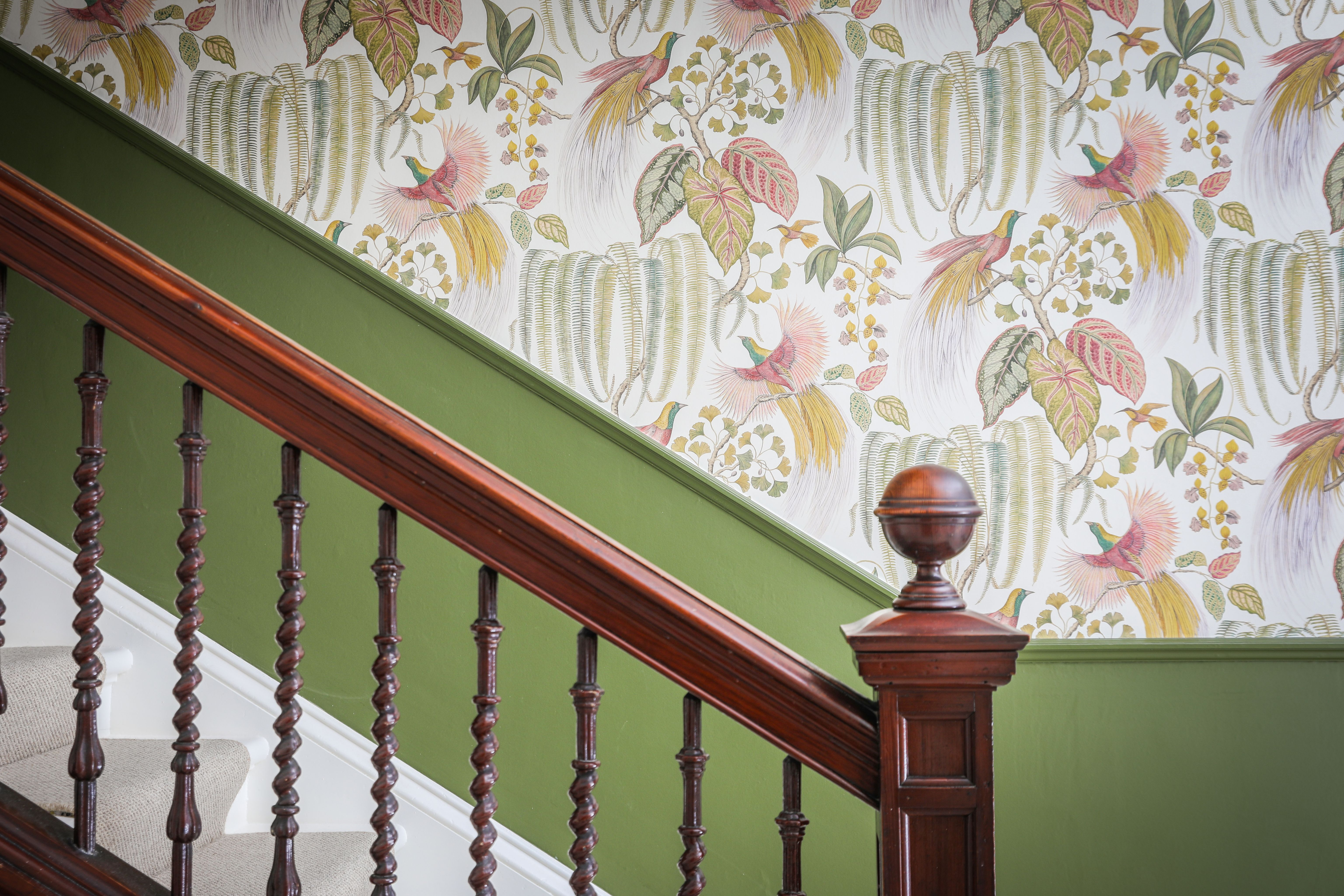 Bird Of Paradise Wallpaper Combined With Farrow And Ball Bancha Paint Paradise Wallpaper Interior Design Interior