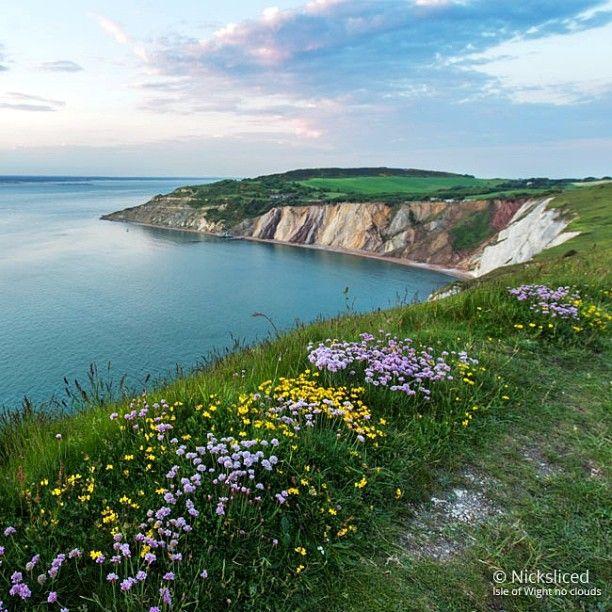 f783054f5fc853bb4df20309e468e5fc - The Coastal Gardener Isle Of Wight