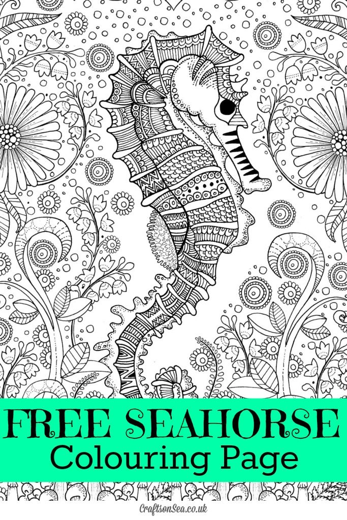Free Seahorse Colouring Page for Adults | Seahorses, Teen and Detail