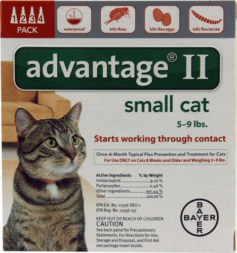 Advantage Ii Orange 4 Month Flea Control For Small Cats 5 To 9 Lbs 4 Tubes Cats Accessories Cat Fleas Small Cat Cat Flea Remedy
