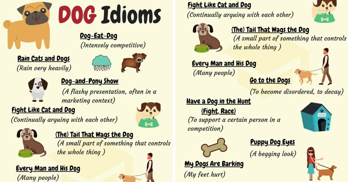 Dog Idioms 16 Useful Dog Idioms And Sayings Idioms Idioms