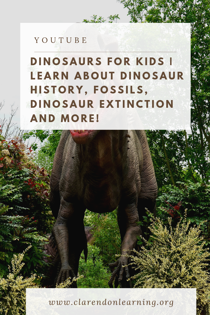 Dinosaurs for Kids is a fun and comprehensive look at dinosaur history. In this video we highlight the various kinds of dinosaurs, talk about how they receive their names, famous dinosaur fossils, and we talk about the people who find dinosaur fossils: Paleontologists. We think that one of the most fascinating creatures to ever roam the Earth was the dinosaur. You most likely have heard of dinosaurs, seen pictures of them on TV or the Internet, or may have seen their bones in a museum. #dinosaurfossils