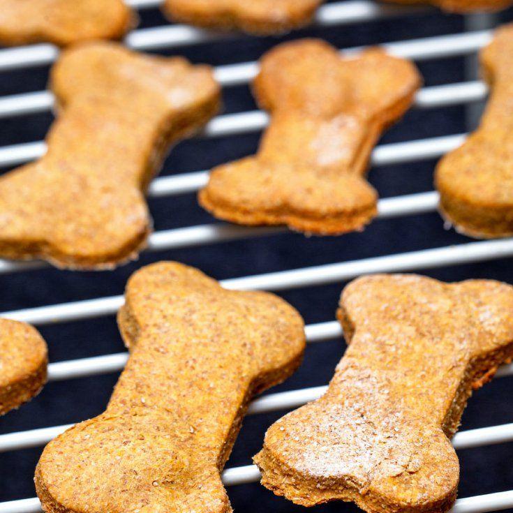 Homemade Dog Treats Cheese Biscuits Vegan Jerky More