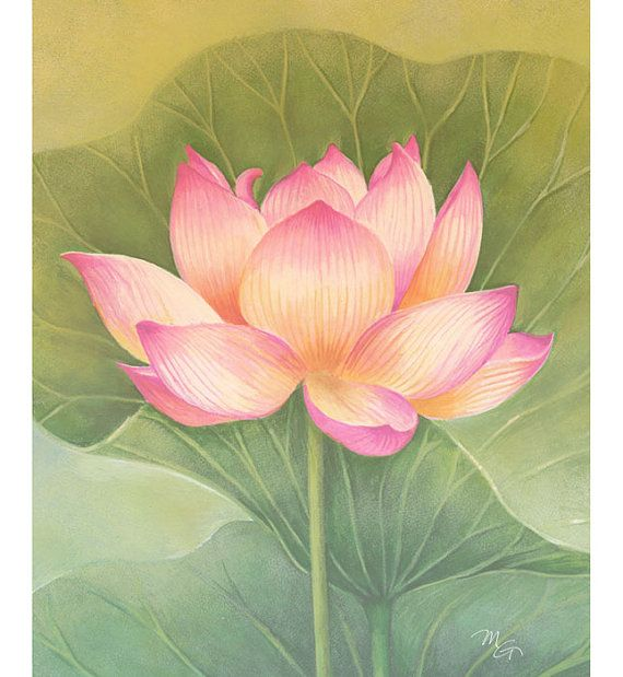 Pink Lotus Flower Watercolor Painting Art Print Children Art