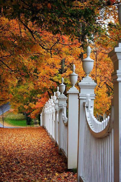 Outono, Calor E Aconchego Dentro De Casa!
