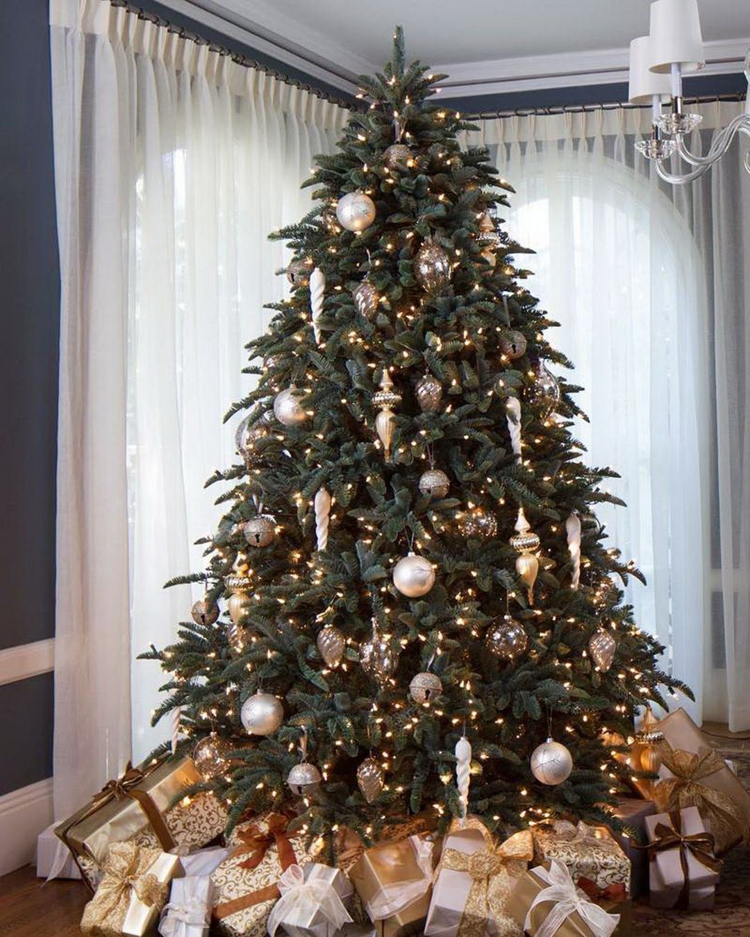 Most Popular Christmas Tree: Always Appreciated For Its Sturdy Branches And Attractive