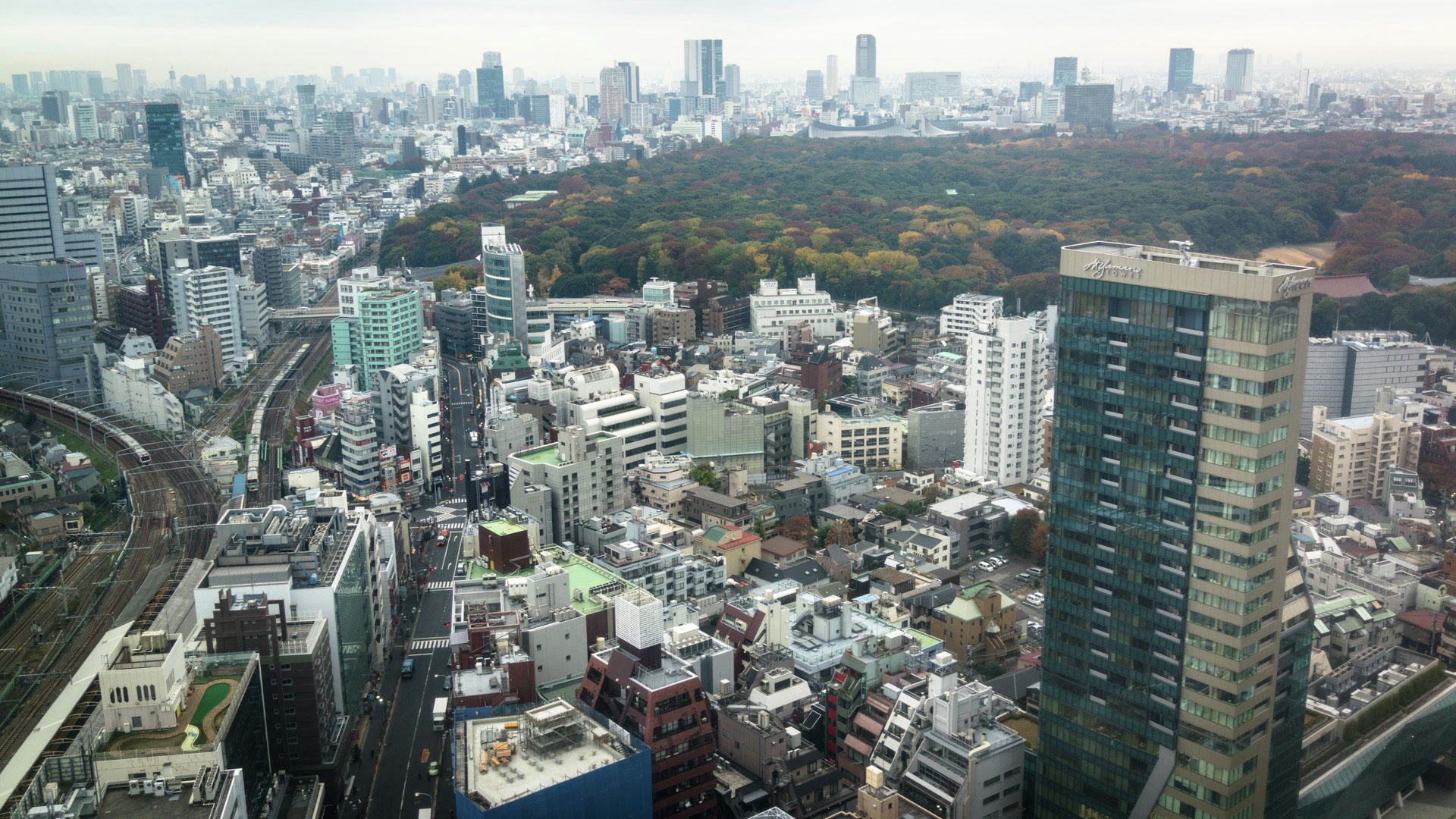 Cidades híbridas: Refletindo sobre os ecossistemas locais