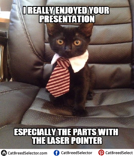 Job Well Done Cat Meme