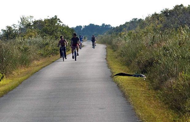 The 15 Best Road And Mountain Bike Trails In The U S Bike