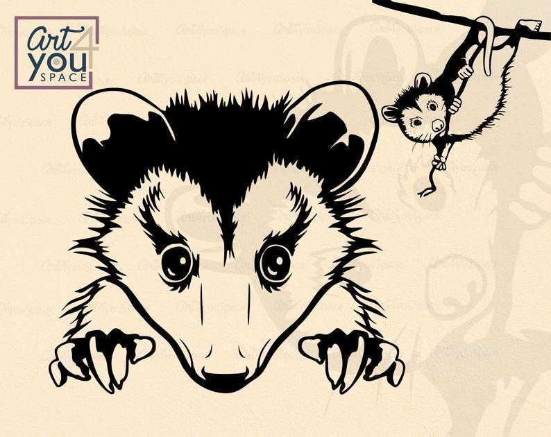 Clip Art , Png Download - Transparent Possum Clipart, Png Download - vhv