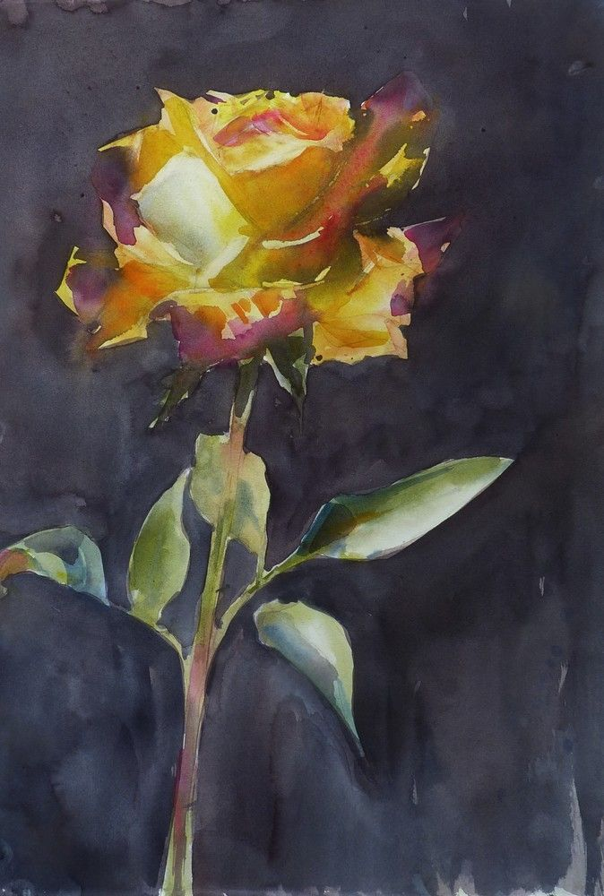 Rose Jaune Sur Fond Noir Flower Art Painting Art