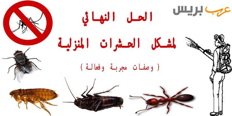Ararbpress Com Arabic Calligraphy Calligraphy