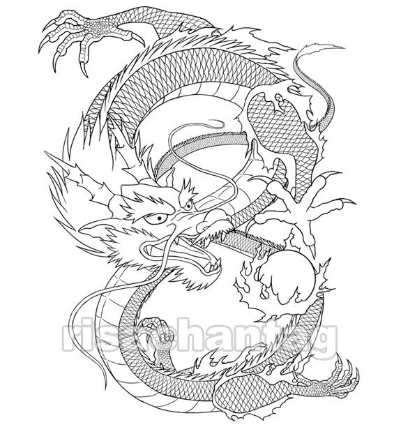 Tiger Chinese Zodiac Sign Zentangle Stylized Vector Illustration