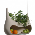 Fresh herbs in your kitchen.