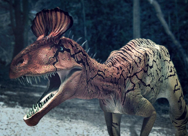 Pin by Paul Harmon on Theropod Dinosaurs Dinosaur