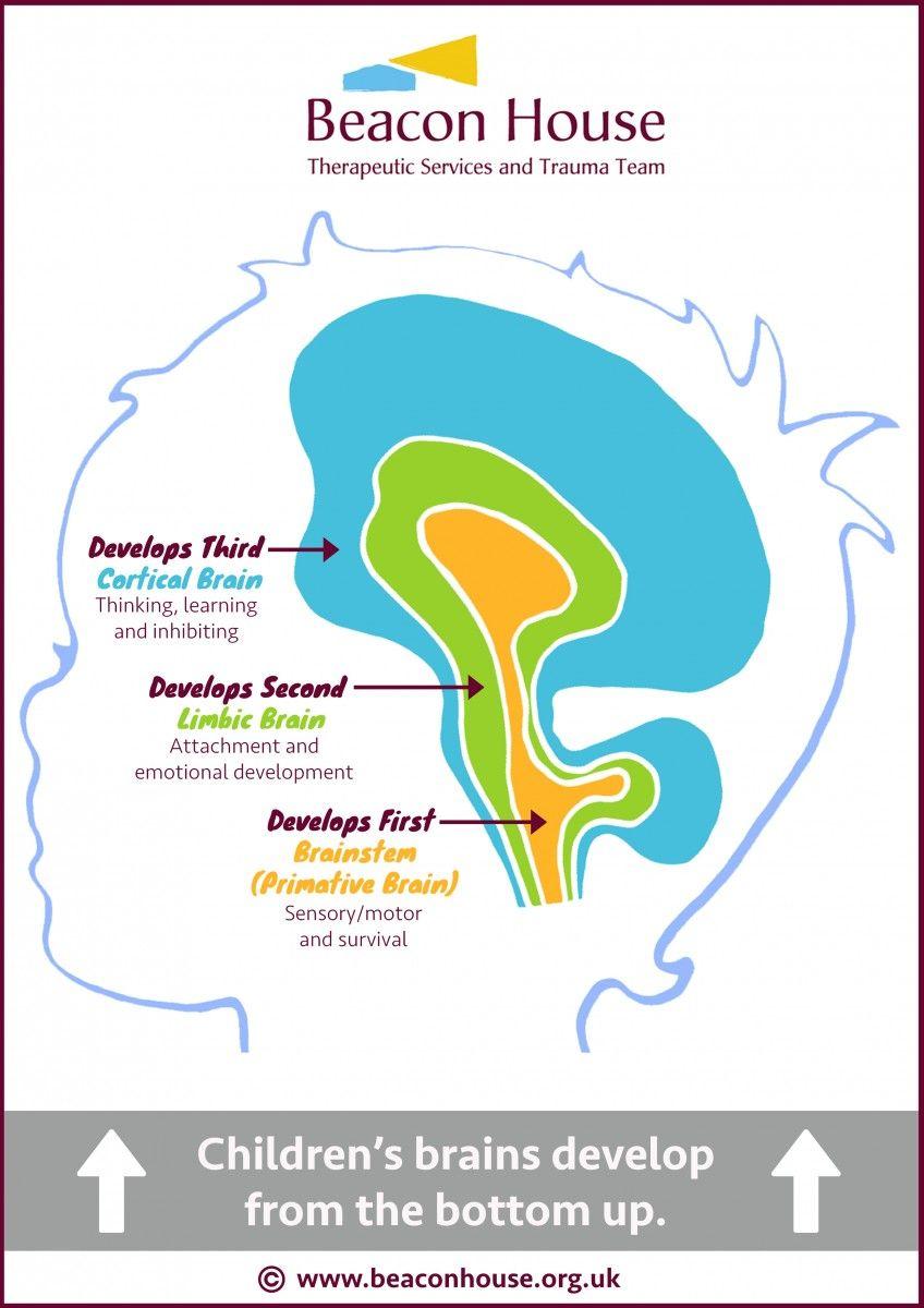 trauma processing therapy pdf pinterest