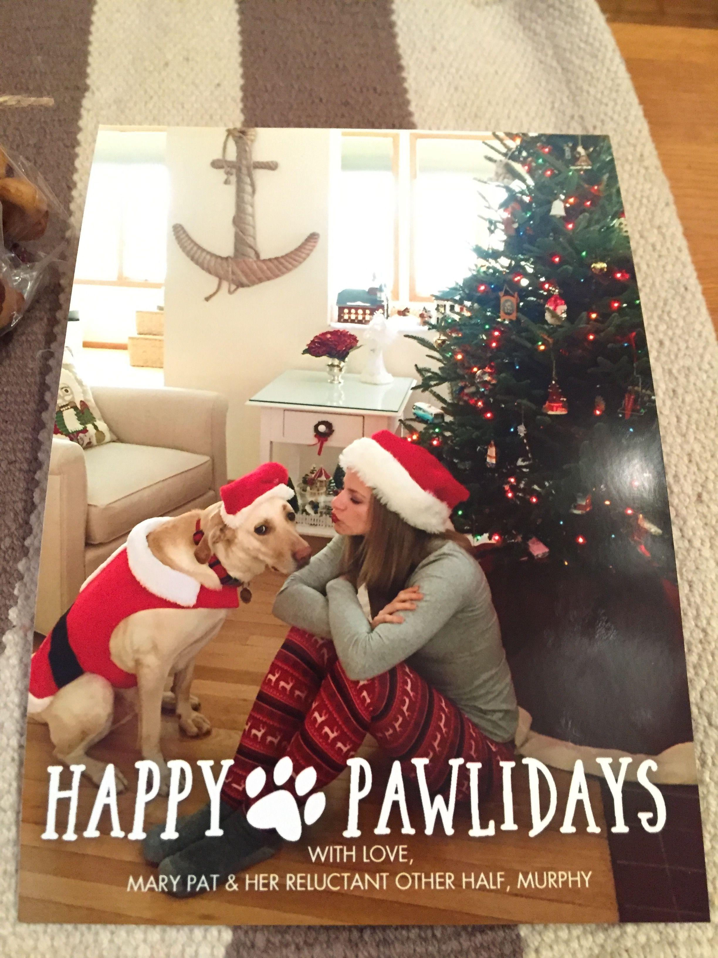 Single Girl Christmas Card Funny Christmas Photos Dog Christmas