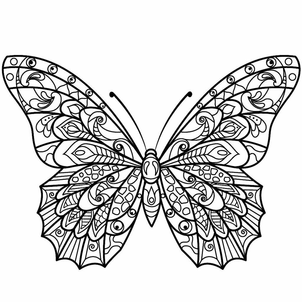 Pin By Melissa D On Coloring Pages Such Insect Coloring Pages Butterfly Coloring Page Butterfly Drawing