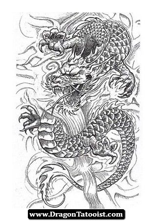Pin By Vanessa Kurtz On Dragoes Japanese Dragon Tattoos Dragon Tattoo Tattoos