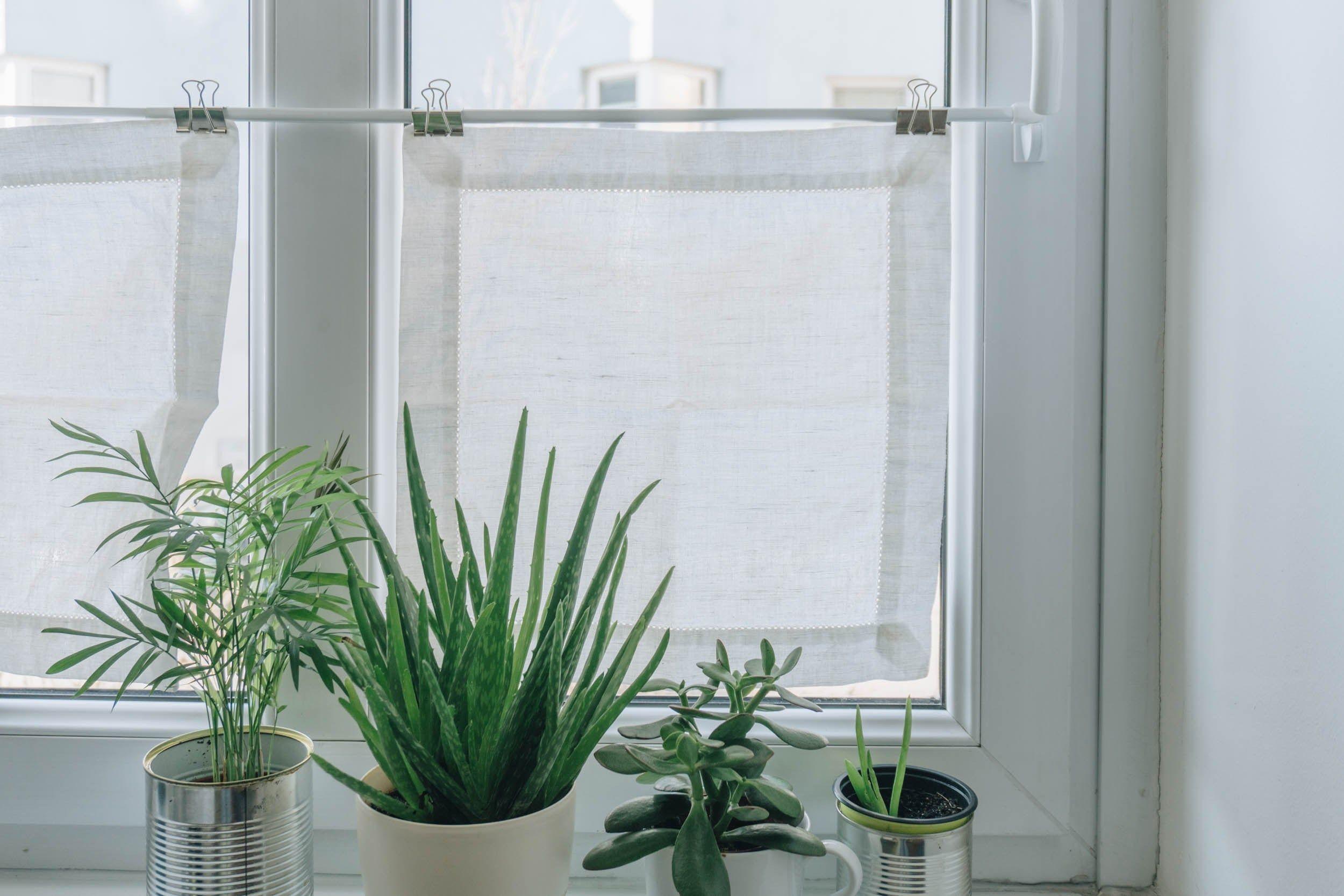 Diy Wohnzimmer Diy Mini Fenster Vorhange Als Sichtschutz Das Diy Lifestyle Magazin Diy Wohnzimmer Sichtschutz Fenster Vorhange