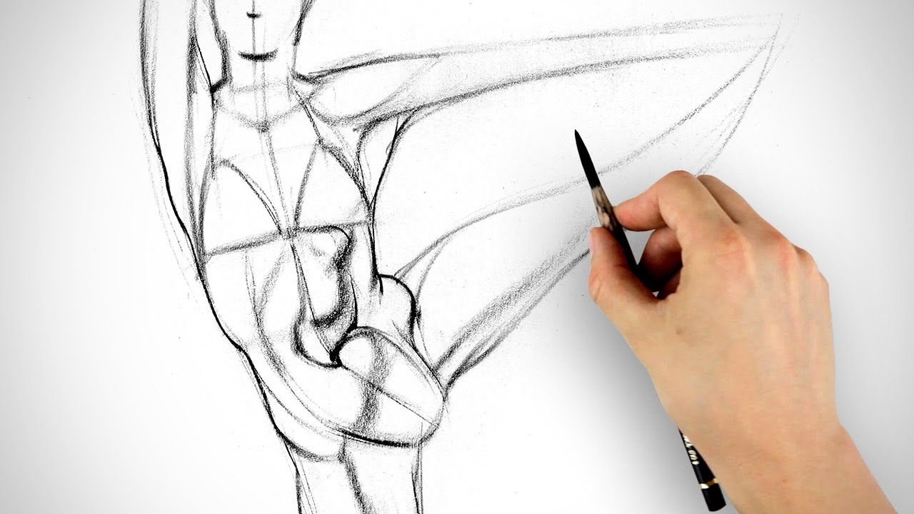 How to Draw Abs - Gesture Example 1 | Art - Drawings | Pinterest ...