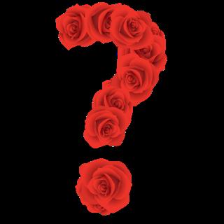 Abecedario Hecho Con Rosas Rojas Red Roses Alphabet Rosas Rojas Imagenes De Letras Rosas