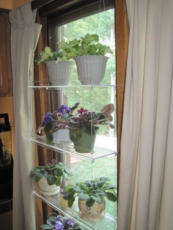Hanging window plant shelves other urban farming - How to hang plants in front of windows ...