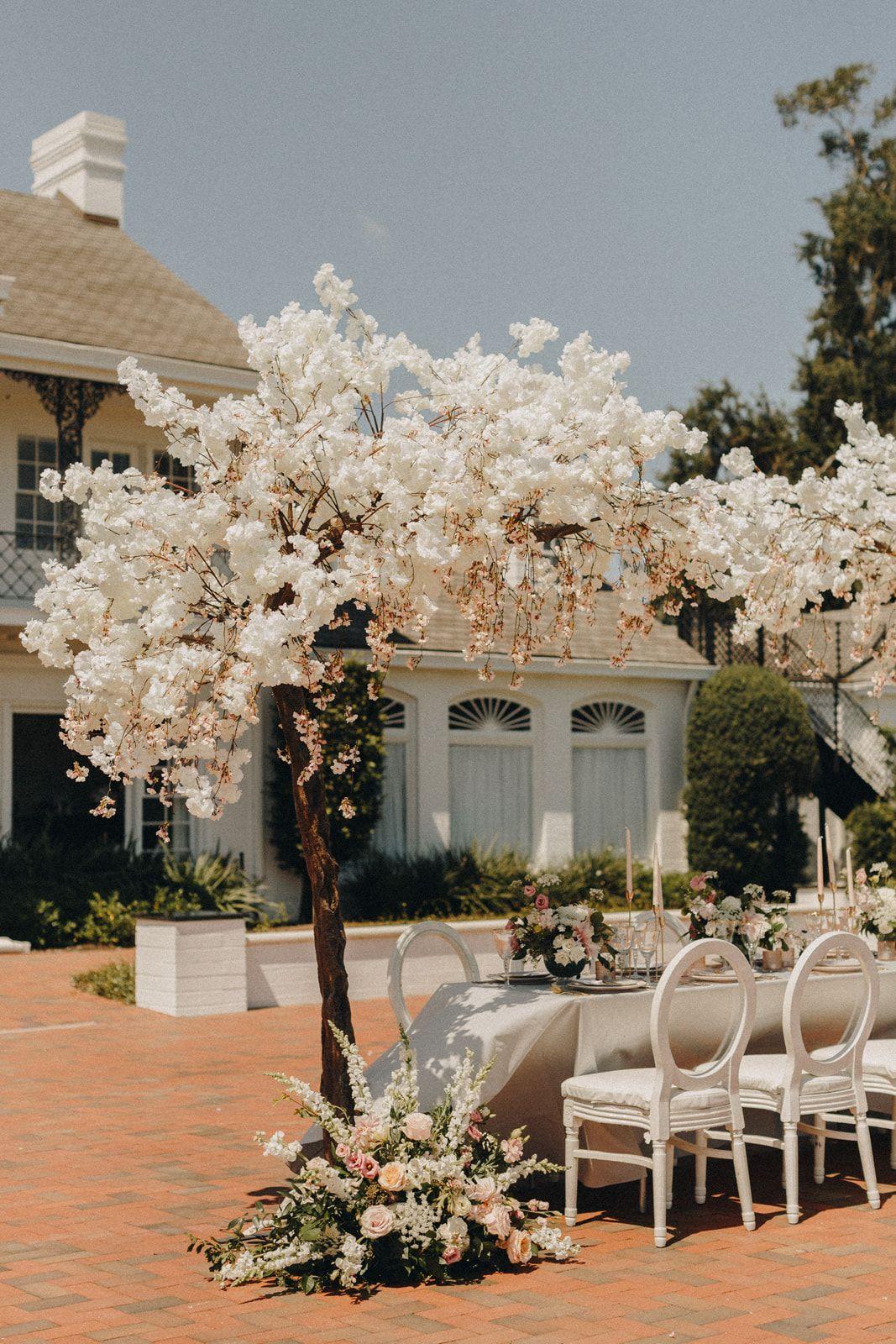 Bluegrass Chic Cherry Blossom Tree Head Table Display Cherry Blossom Tree Blossom Trees Florida Wedding Photographer