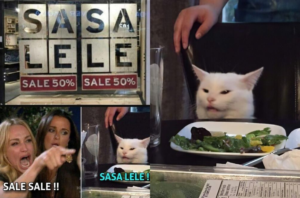 Get To Know The Table Cat Behind The Hilarious Sasa Lele Meme And Many More White Cat Meme Cats Cat Memes