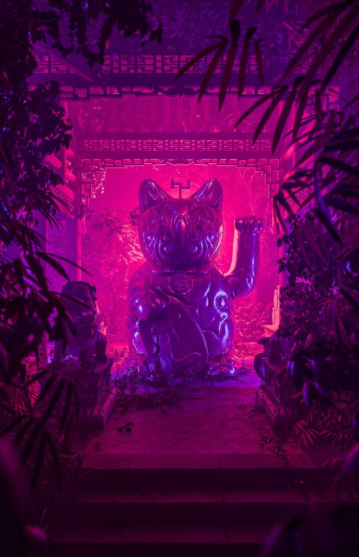 Kim Laughton PICDIT Neon noir, Neon, Neon aesthetic