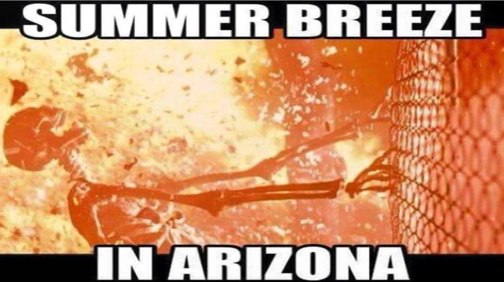 Pin By Laura Moulton On Humor Summer Memes Funny Summer Memes Arizona Humor