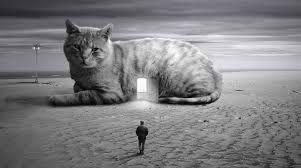 Risultati immagini per surrealismo