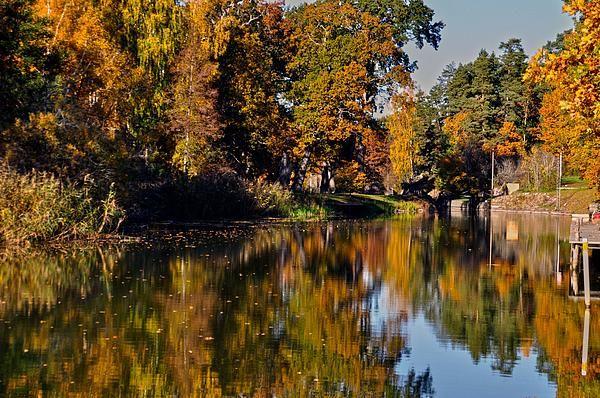 #Photography #View #Landscapes #Nature #Sverige #Sweden #Höst #Fall #Autumn #Colors #Beatiful #World #Travel #Resa #Fåglar #Birds #Follow #Me #Visit #Holiday