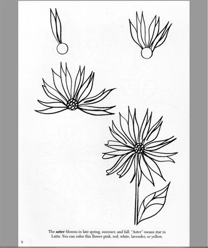 Customer image gallery for how to draw flowers dover how to draw customer image gallery for how to draw flowers dover how to draw mightylinksfo