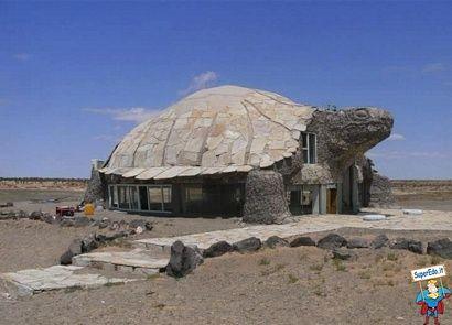 Casa a forma di tartaruga castelli case e hotel nel for Case stravaganti