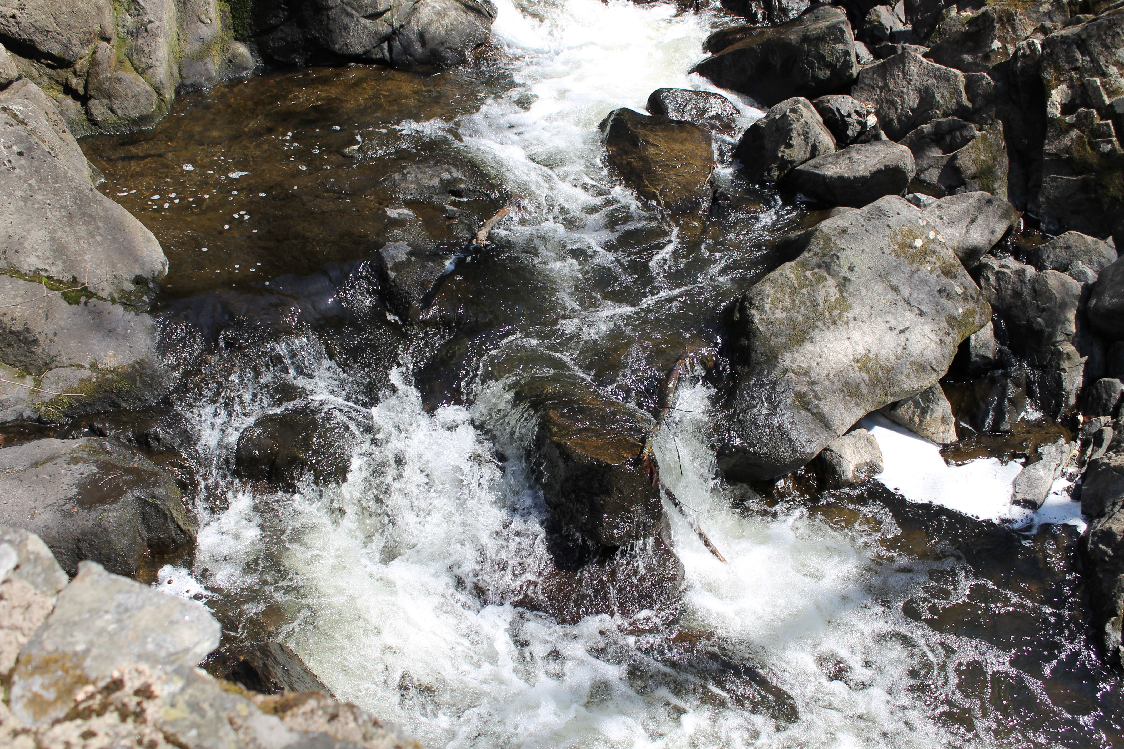 Southford Falls 4/8/13