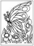 Fantasy Coloring Pages For Adults Printable Adult Activities Its All Collectible Butterfly Coloring Page Coloring Pages Adult Coloring Pages