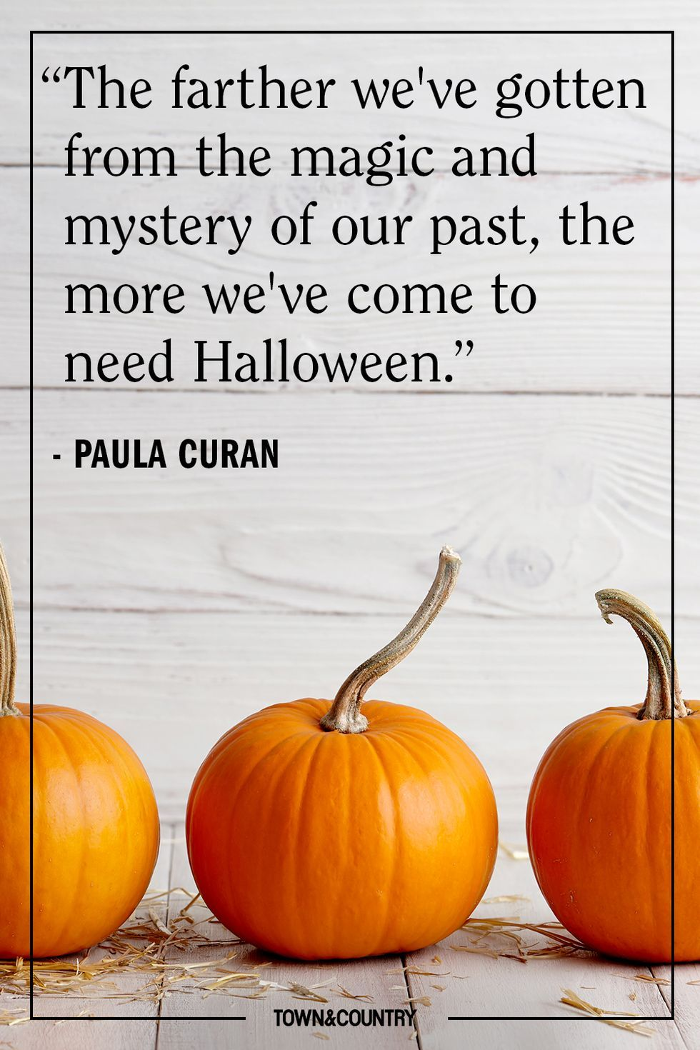 37 Halloween Quotes to Get You in the Spooky Spirit in