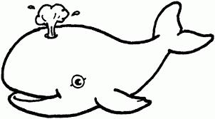 Resultats De Recherche D Images Pour Imprimer Coloriage De Baleine Dieren Kleurplaten Kleurboek Walvis Tekening
