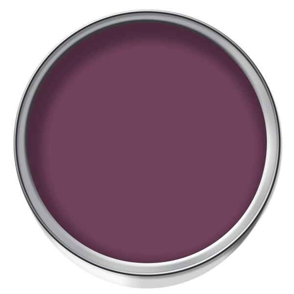 Simple Bedroom Wall Decor Bedroom Wall Decor Ebay Contemporary Bedroom Cupboards Colours Of Bedroom Walls: Dulux Feature Wall Emulsion Paint Mulberry Burst 1.25ltr
