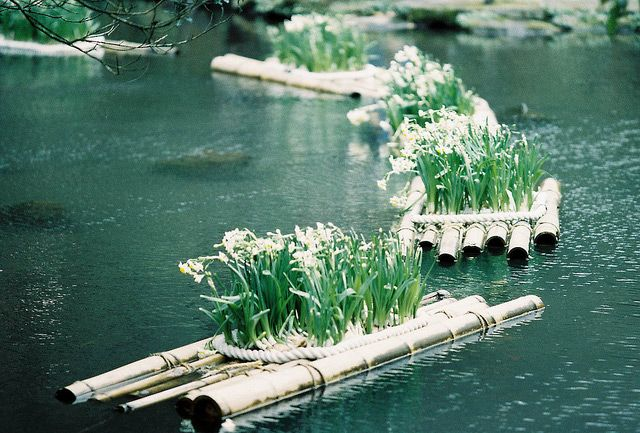 Photo Of The Day Floating Gardens In Taiwan Floating Garden