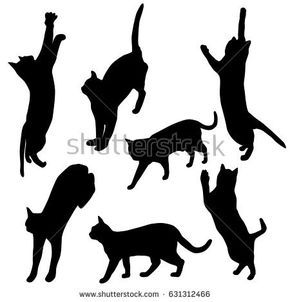 set vector silhouette of the cat different poses black