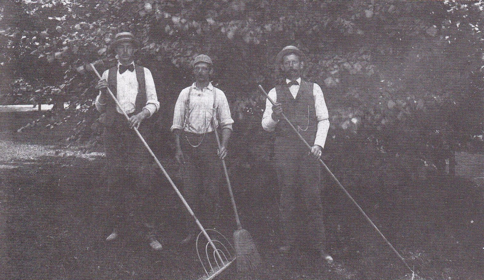 Highfield gardeners. (With images) Historical, Olds